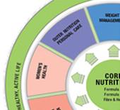 Herbalife Alap Táplálkozás
